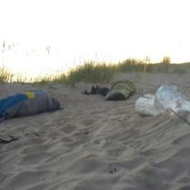 sleeping_beaches